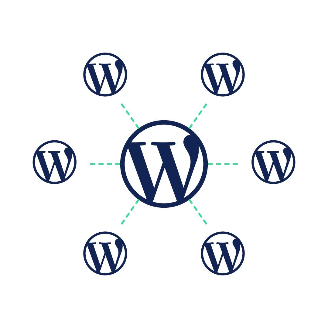 Wat is een WordPress multisite en wanneer is het interessant voor jou?