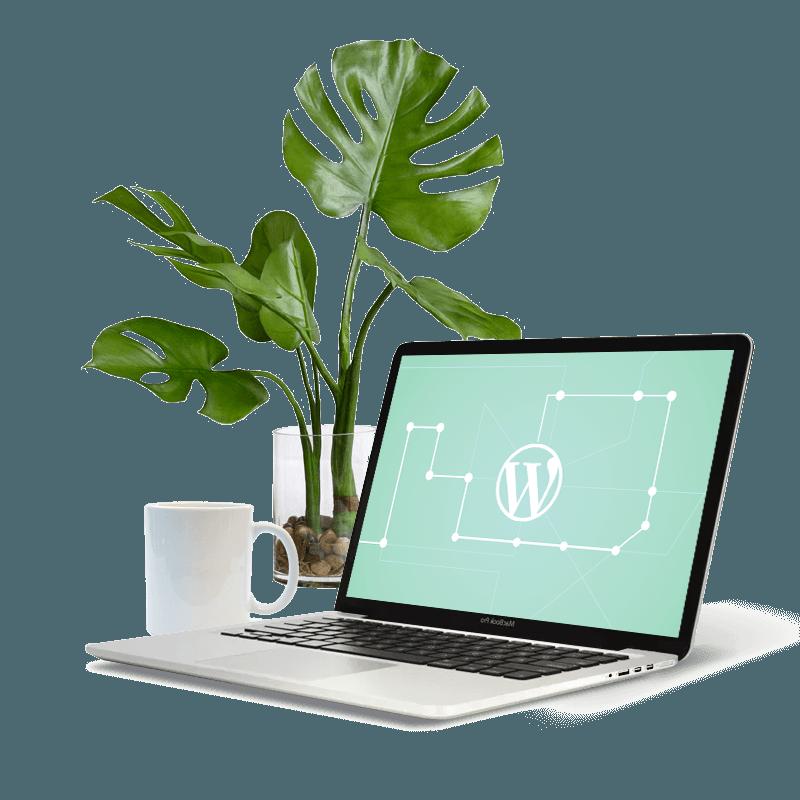Stuurlui-WordPress-Bureau