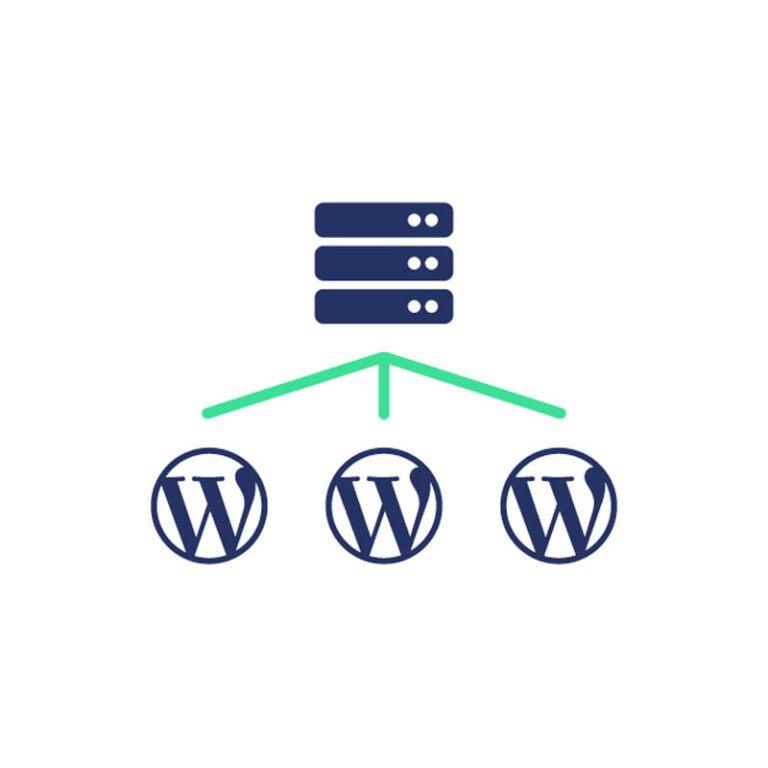 Wordpress hosting in combinatie met support en onderhoud